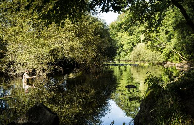 Pesca en Pont Scorff