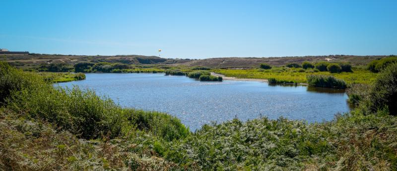 Guidel étang du Loch réserve naturelle