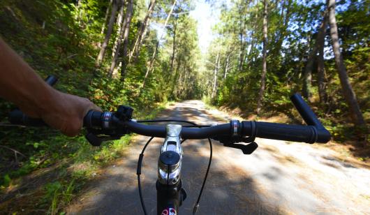 A travers la pinède, à vélo sur la voie verte des kaolins à Ploemeur.